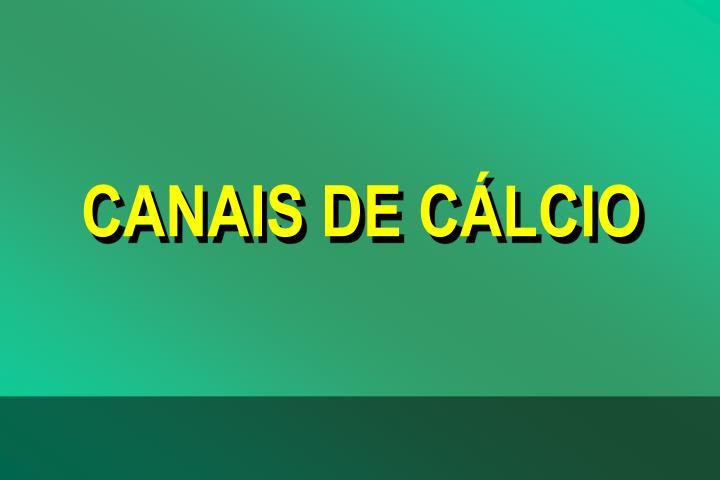 CANAIS DE CLCIO