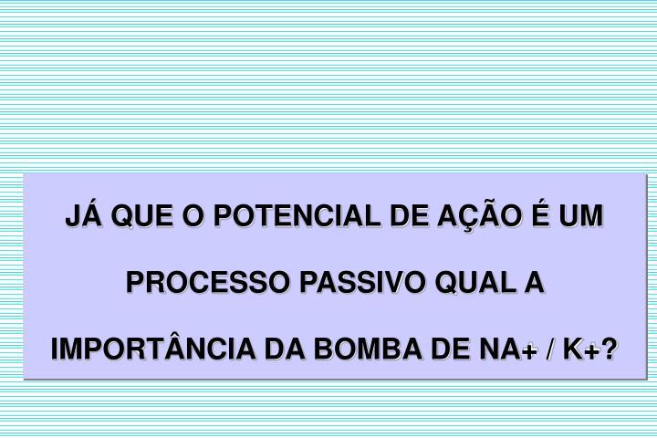J QUE O POTENCIAL DE AO  UM PROCESSO PASSIVO QUAL A IMPORTNCIA DA BOMBA DE NA+ / K+?