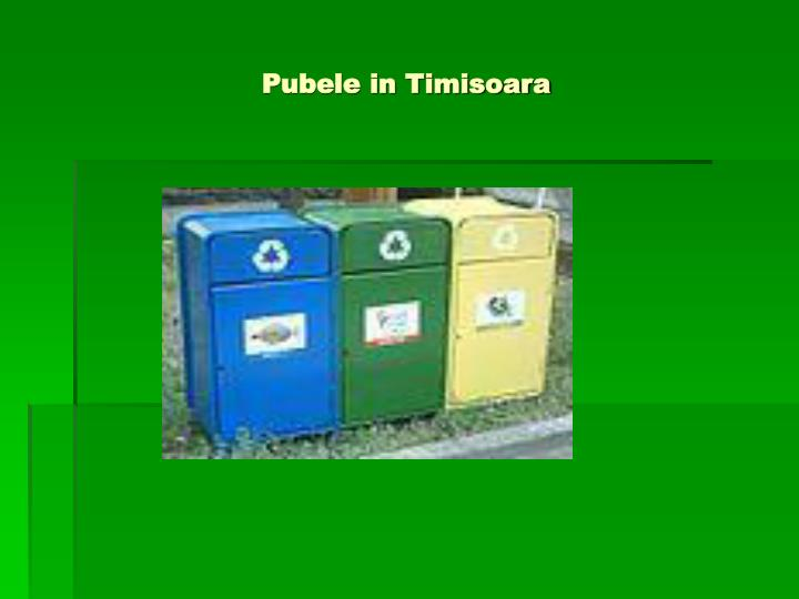 Pubele in Timisoara
