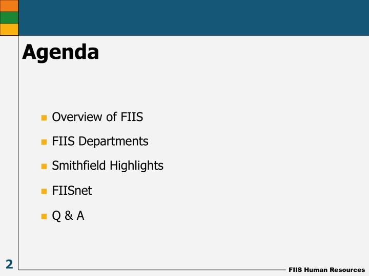 Overview of FIIS