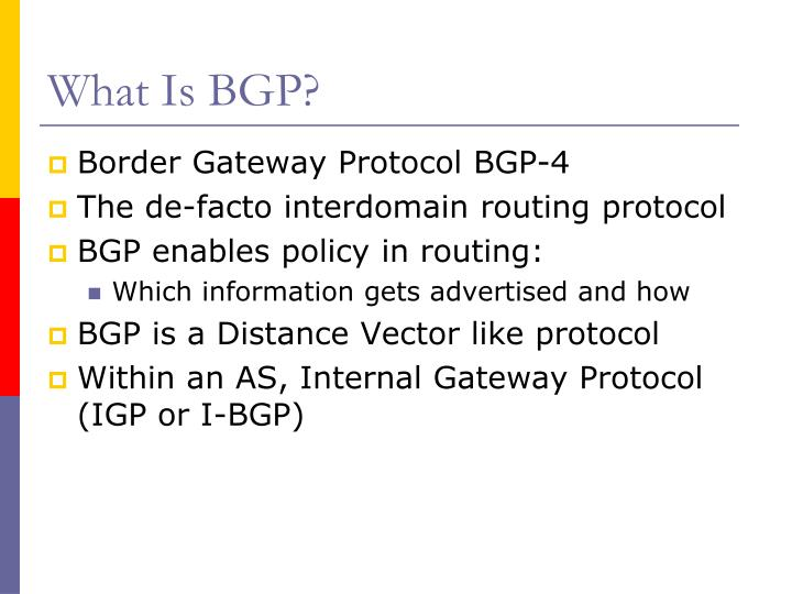 What is bgp