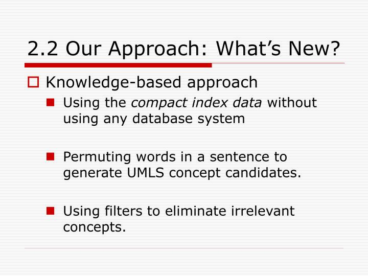 2.2 Our Approach: What's New?