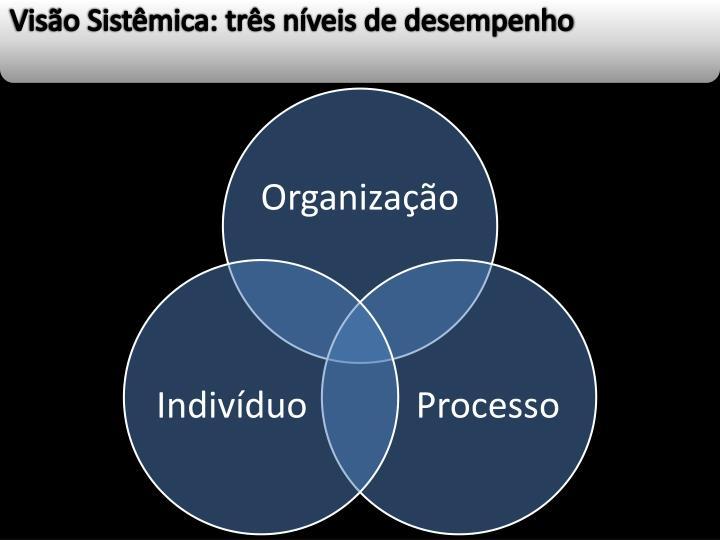 Visão Sistêmica: três níveis de desempenho