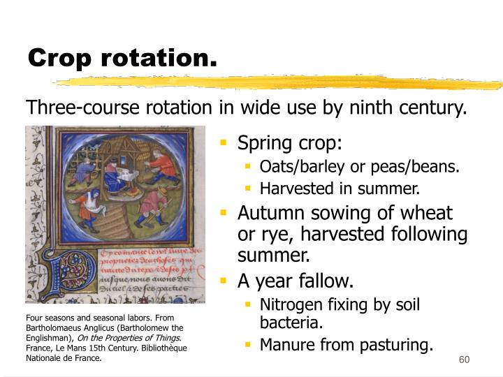 Crop rotation.