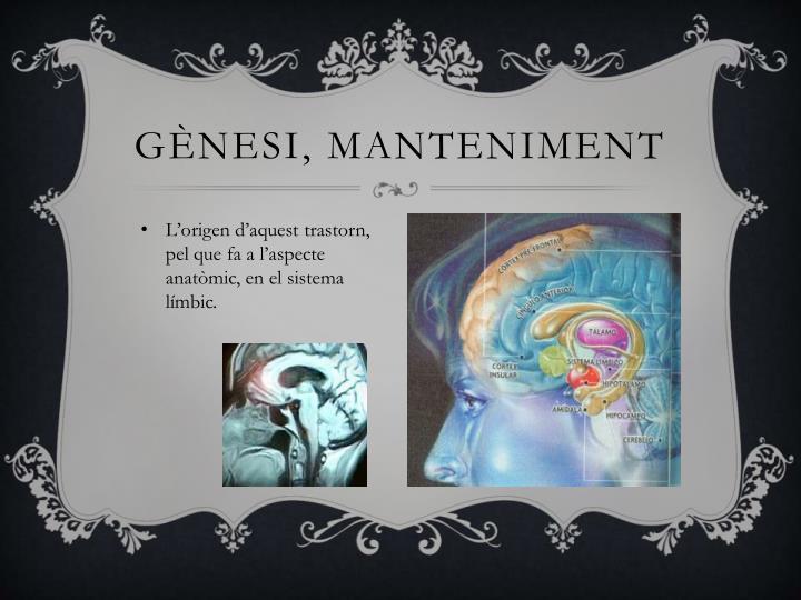 Gènesi