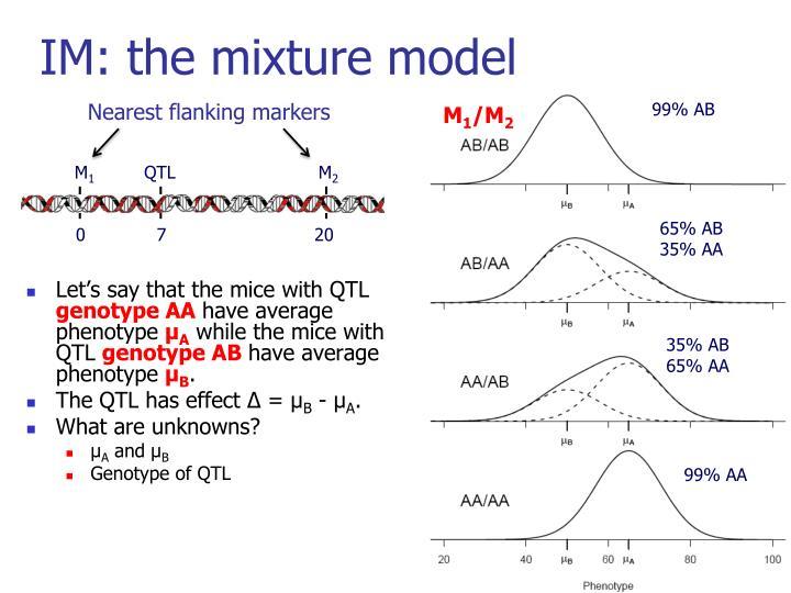 IM: the mixture model