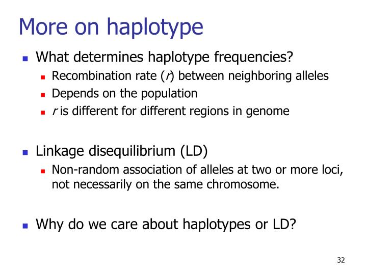 More on haplotype