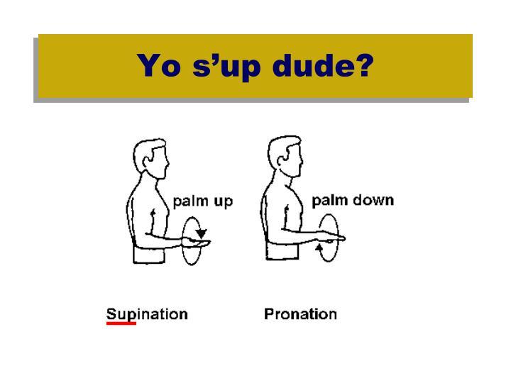 Yo s'up dude?