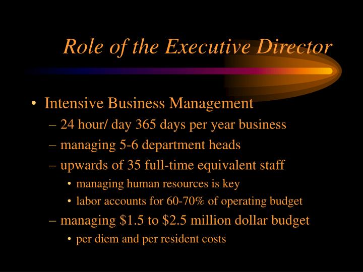 Role of the Executive Director