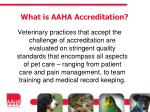 what is aaha accreditation