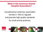 what is the american animal hospital association