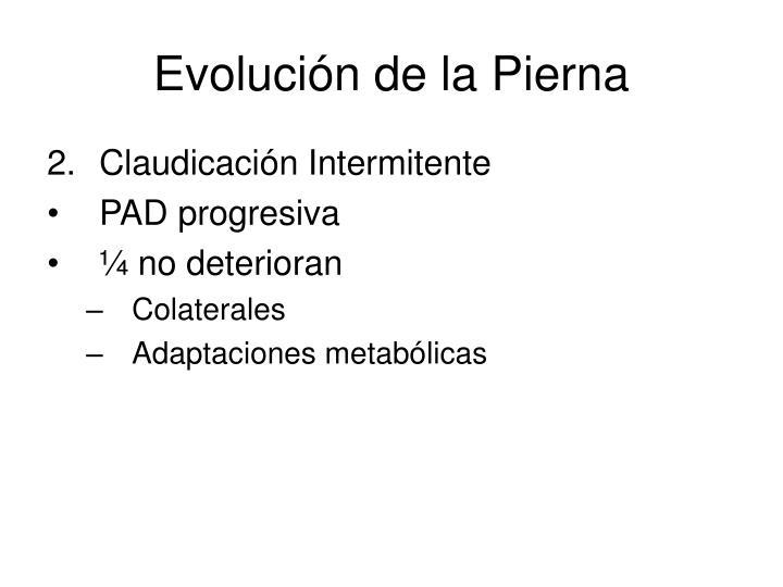 Evolución de la Pierna