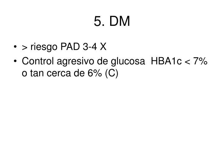 5. DM