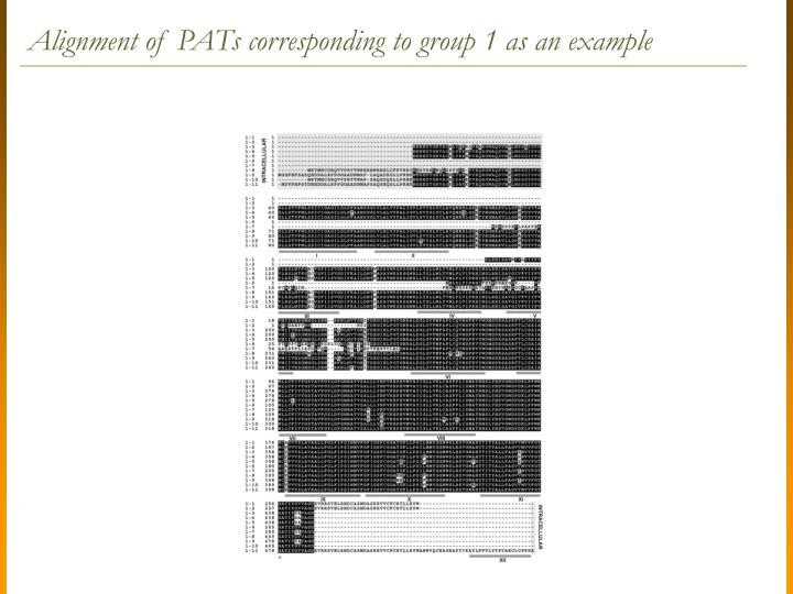 Alignment of PATs corresponding to group 1 as an example