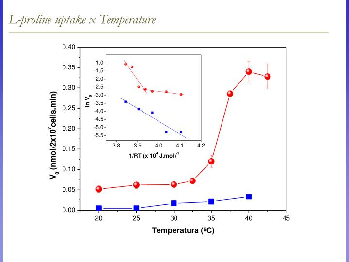 L-proline uptake x Temperature