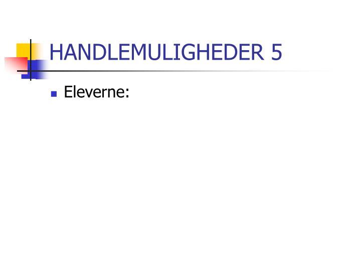 HANDLEMULIGHEDER 5