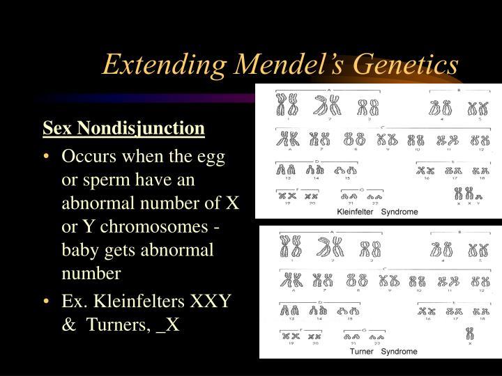 Extending Mendel's Genetics