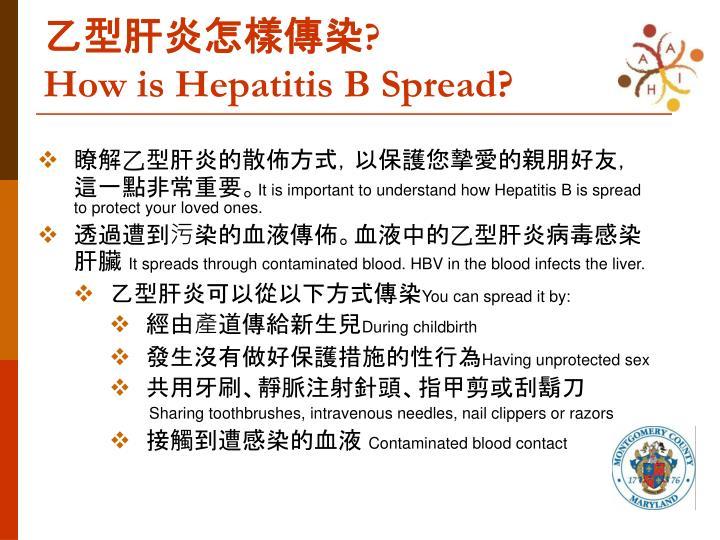 乙型肝炎怎樣傳染