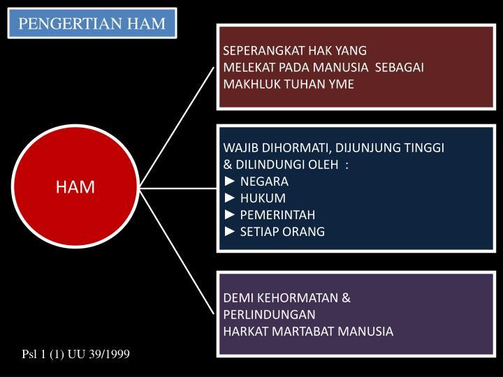 PENGERTIAN HAM