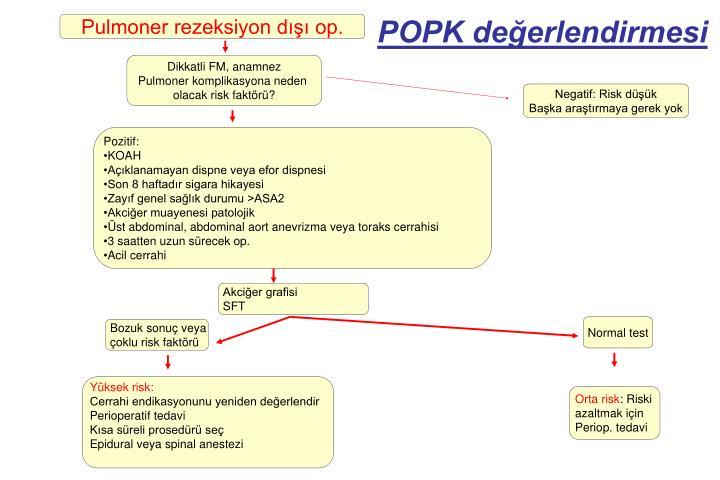 Pulmoner rezeksiyon dışı op.