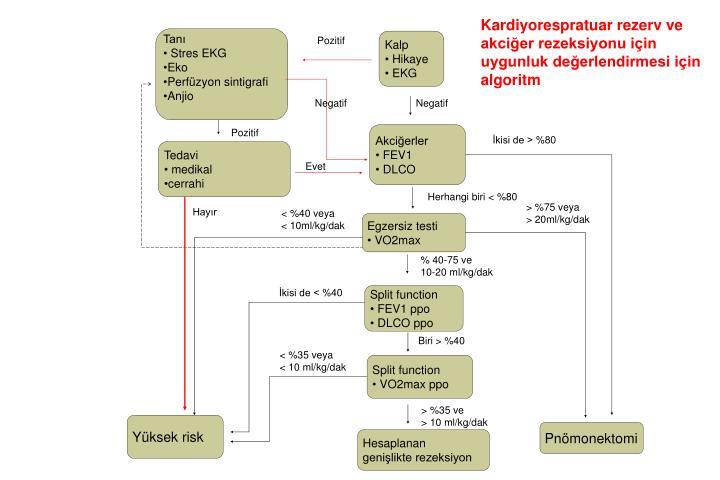 Kardiyorespratuar rezerv ve akciğer rezeksiyonu için uygunluk değerlendirmesi için algoritm