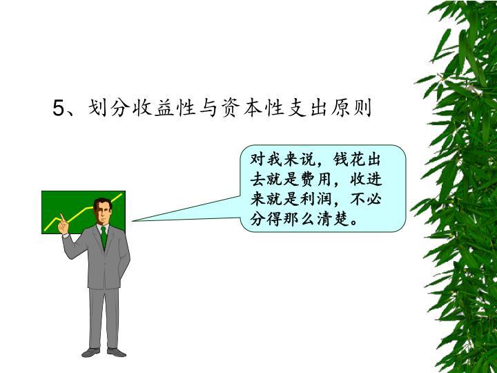 5、划分收益性与资本性支出原则