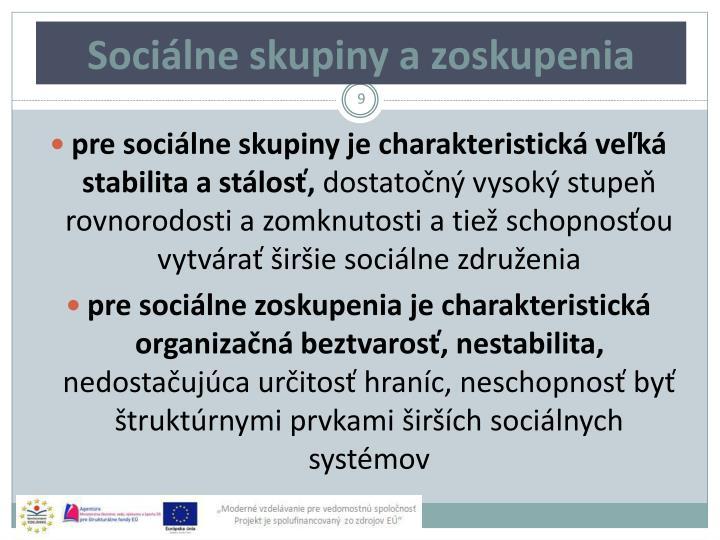 Sociálne skupiny a zoskupenia