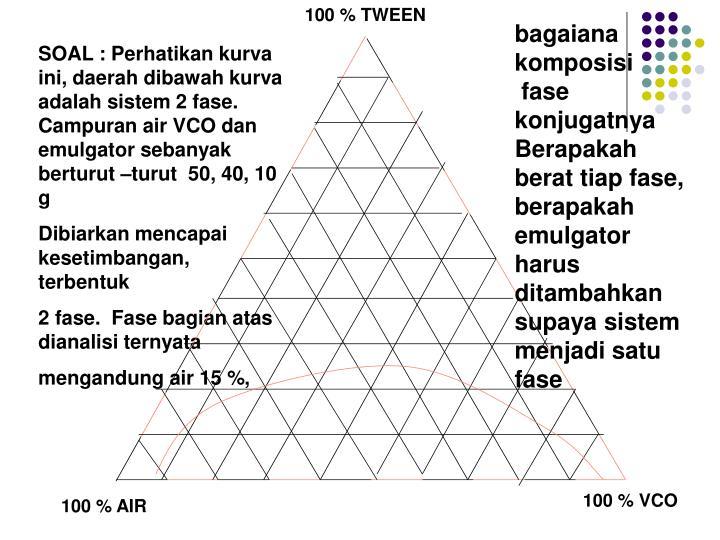 100 % TWEEN