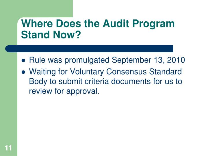 Where Does the Audit Program Stand Now?