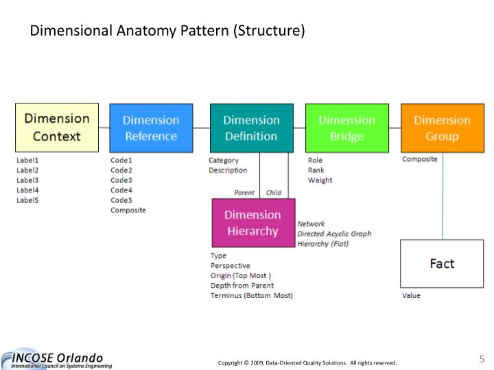 Dimensional Anatomy Pattern (Structure)