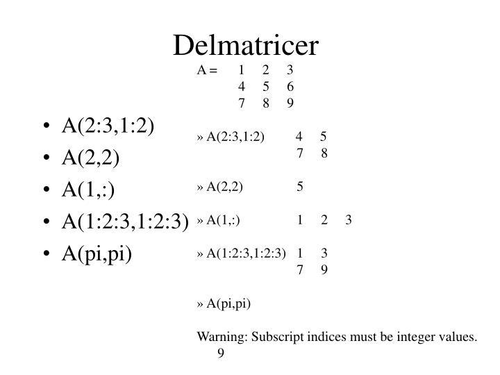 Delmatricer