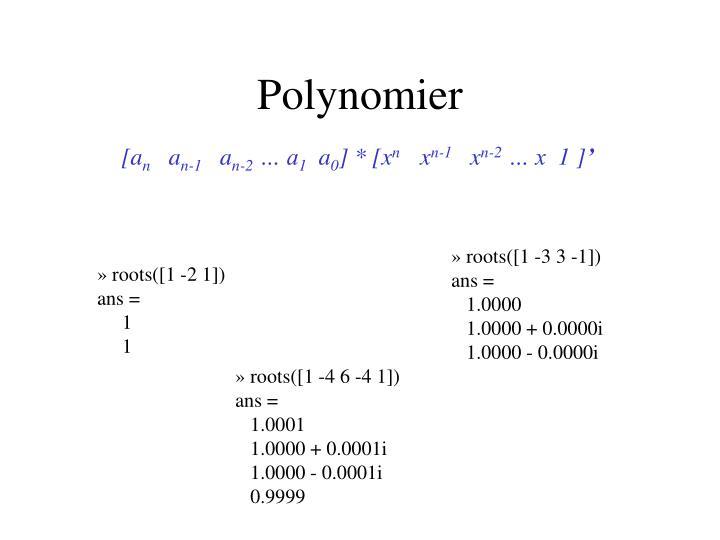 Polynomier