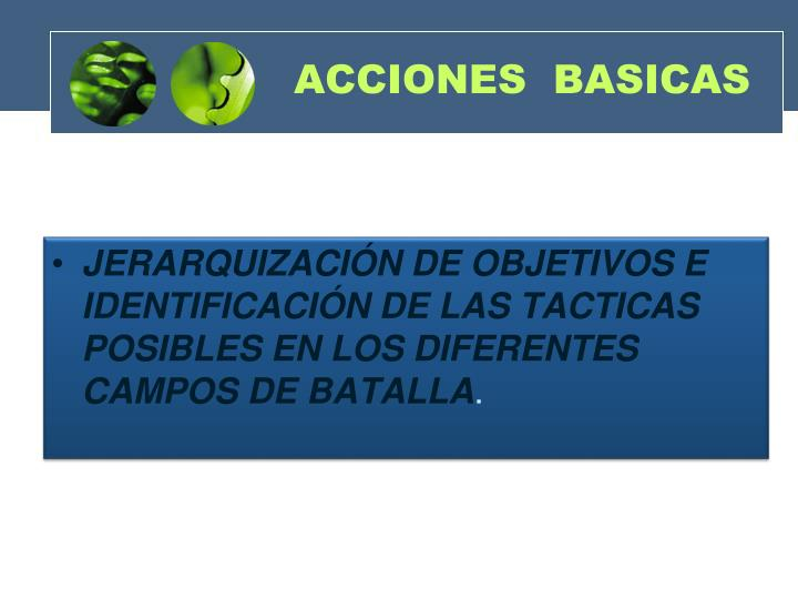 ACCIONES  BASICAS