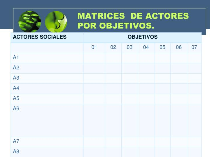 MATRICES  DE ACTORES POR OBJETIVOS.
