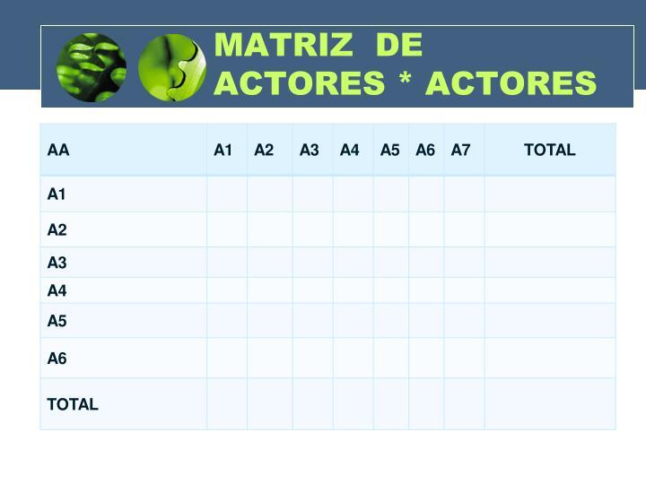 MATRIZ  DE