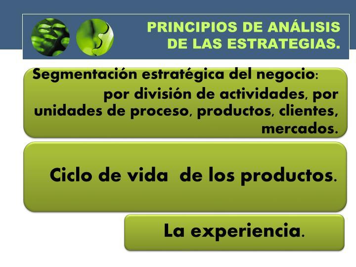 PRINCIPIOS DE ANÁLISIS  DE LAS ESTRATEGIAS.