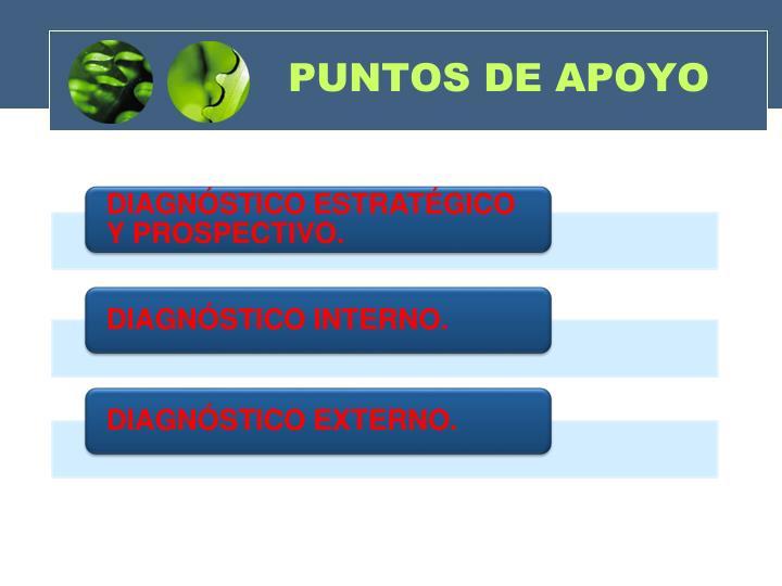 PUNTOS DE APOYO