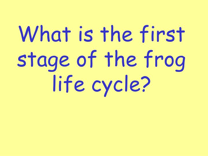 What is the first stage of the frog life cycle?
