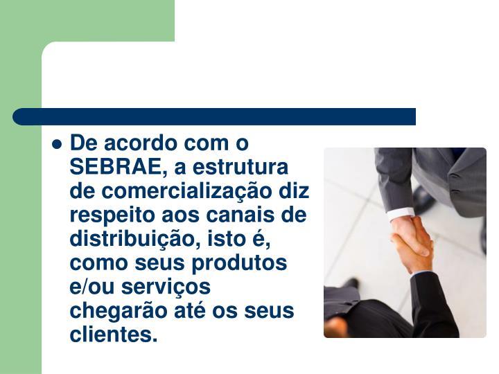 De acordo com o SEBRAE, a estrutura de comercializao diz respeito aos canais de distribuio, isto , como seus produtos e/ou servios chegaro at os seus clientes.