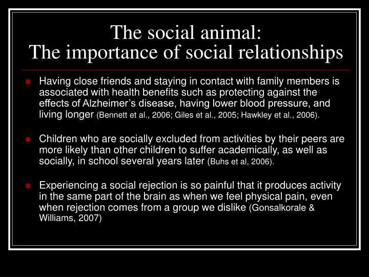 The social animal: