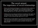 the social animal the importance of social relationships
