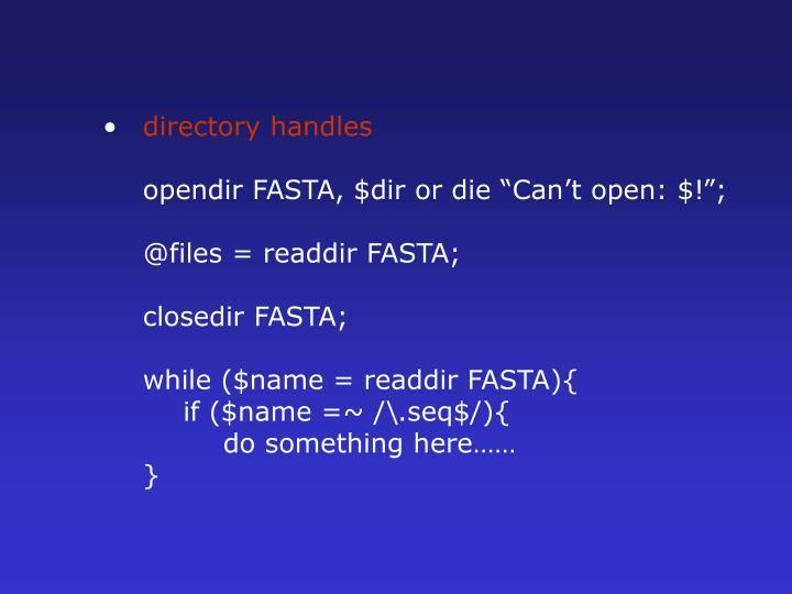 directory handles