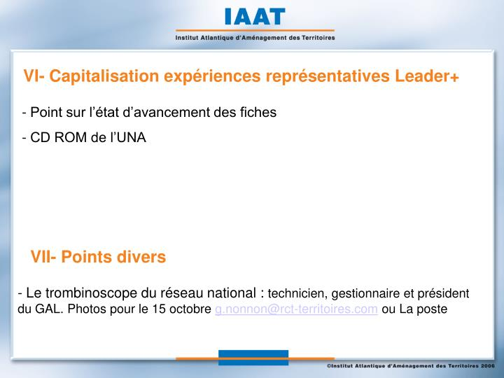 VI- Capitalisation expériences représentatives Leader+
