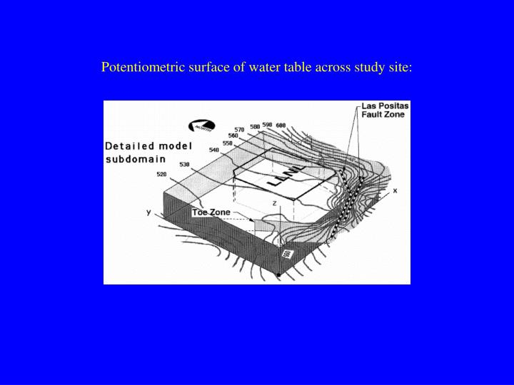 Potentiometric surface of water table across study site: