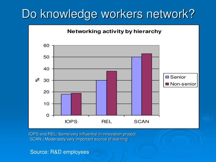 Do knowledge workers network?