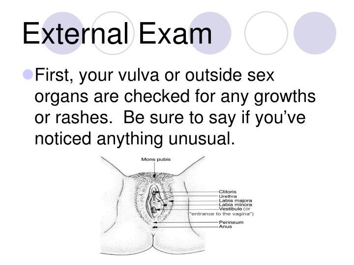 External Exam
