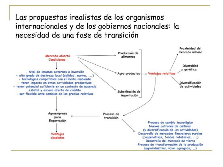 Las propuestas irealistas de los organismos internacionales y de los gobiernos nacionales: la necesidad de una fase de transición
