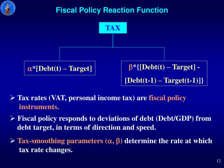 Fiscal Policy Reaction Function