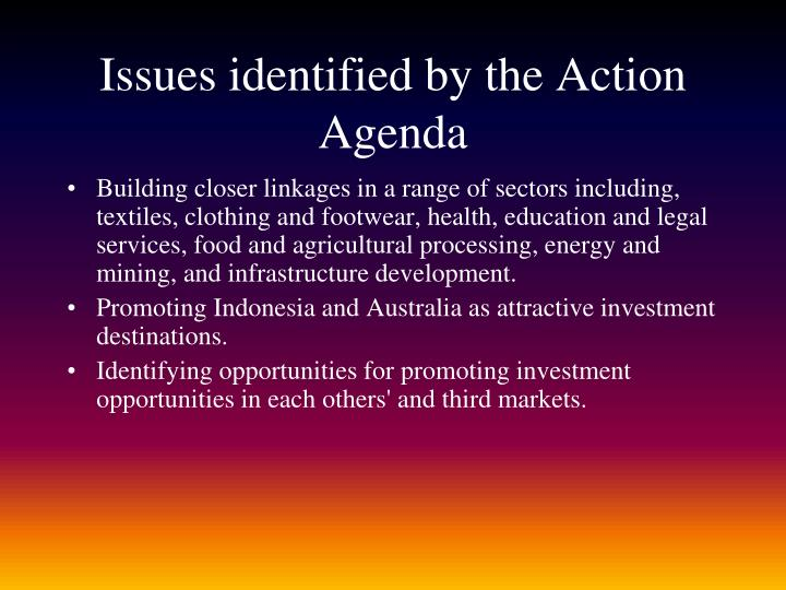 Issues identified by the Action Agenda