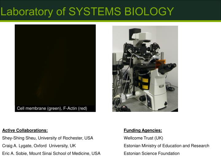 Laboratory of SYSTEMS BIOLOGY
